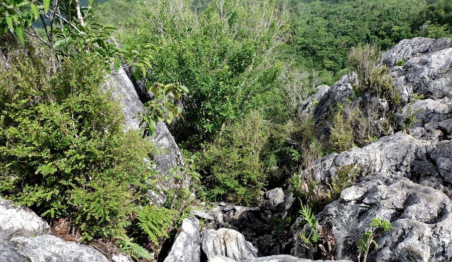 Mt Kapayas peak