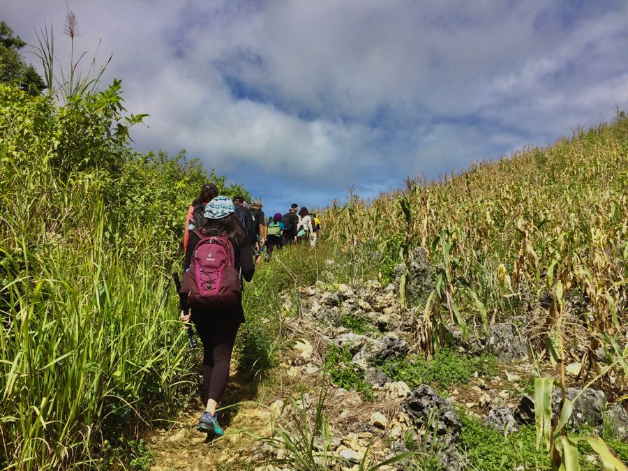 trail to Mt. Kapayas Cebu