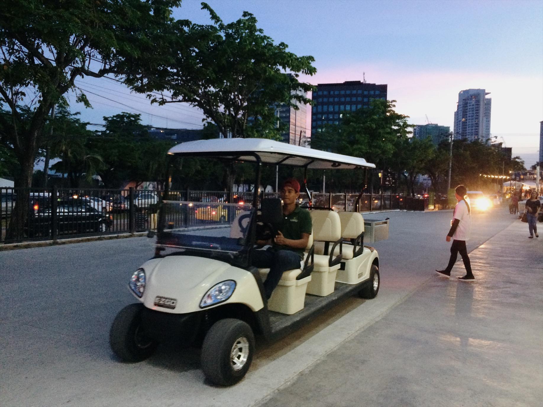 Landers Golf cart