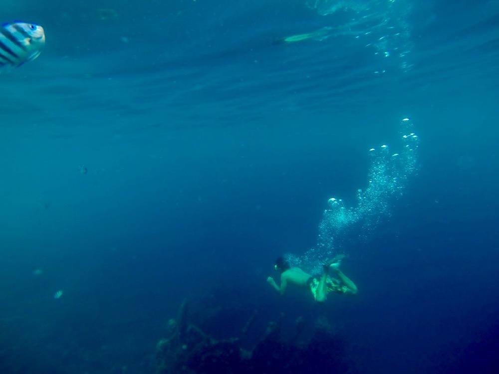 Coron Island Skeleton Wreck
